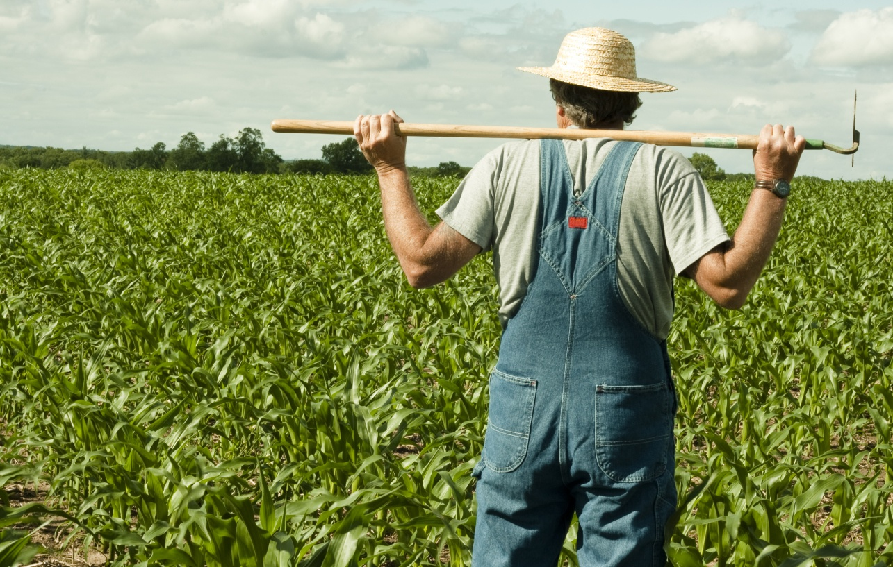 Is it time to start really educating our farmers?