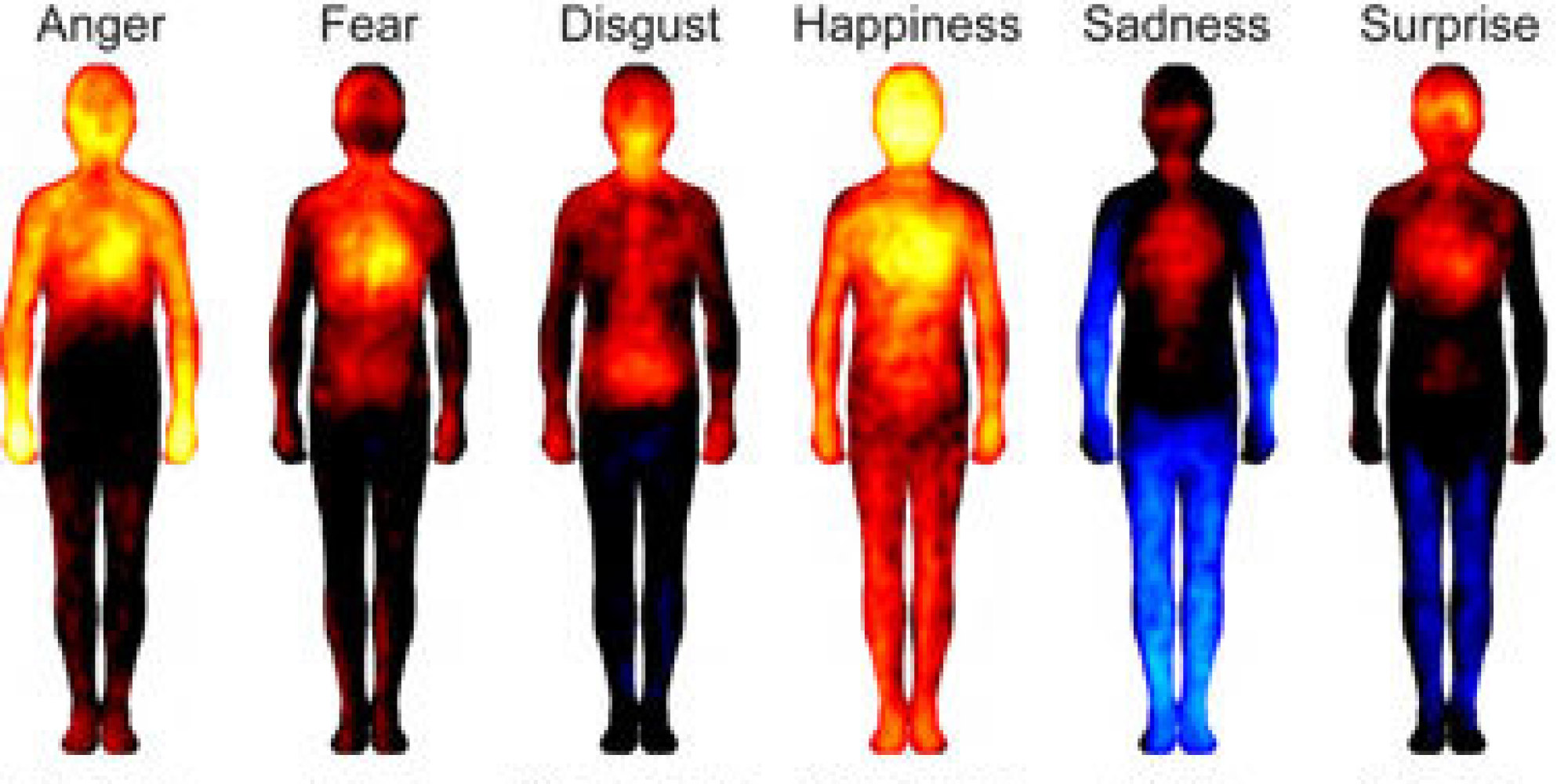 How much of an influence on our health do our emotions have?