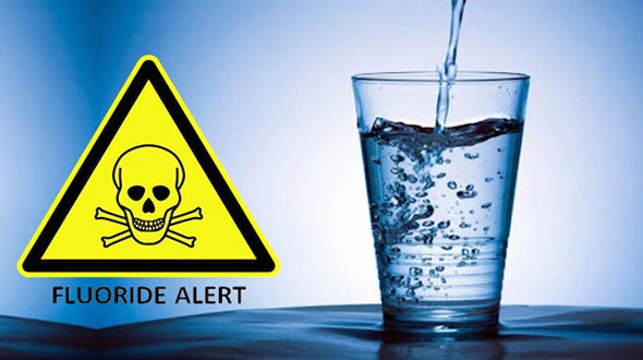 The effects of fluoride